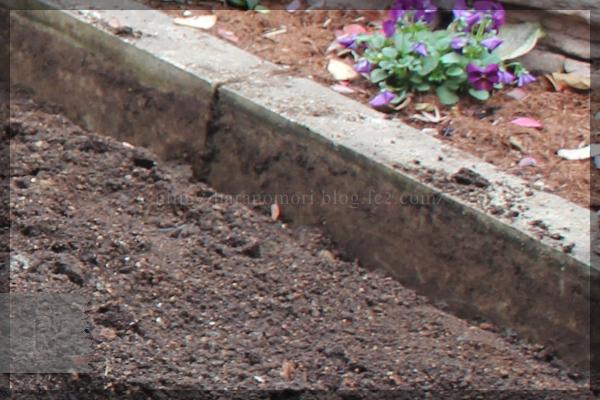 DIY メインガーデン テラス横 石張り床 花壇 レンガ 20141216