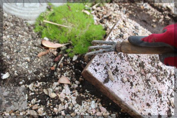 DIY 庭づくり メインガーデン横 通路 20141210