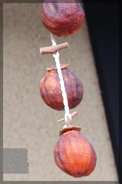 干し柿 赤い実 20141209