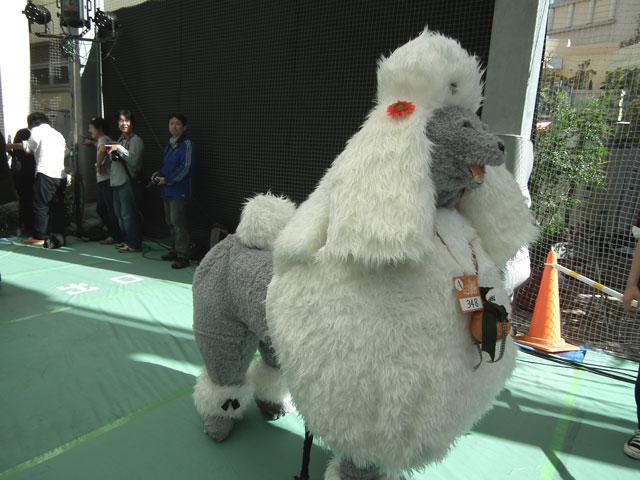 カワサキハロウィン2013 犬の仮装