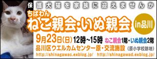 shinagawa29_320x120.jpg