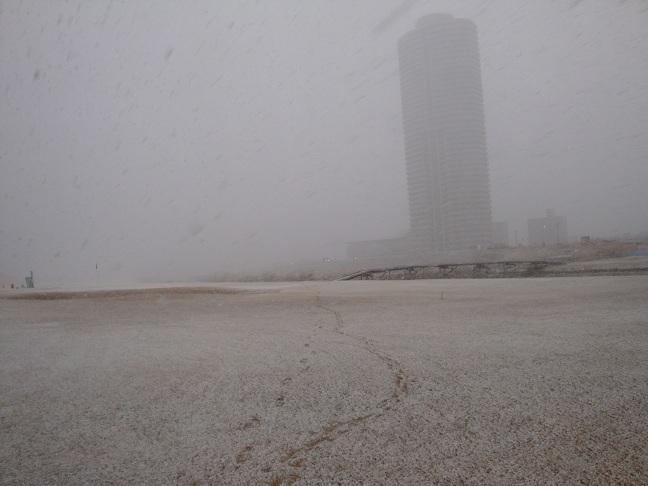 雪で~す!! 1