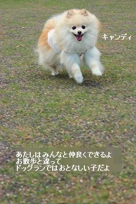 s-IMG_0415.jpg