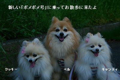 s-IMG_4282.jpg