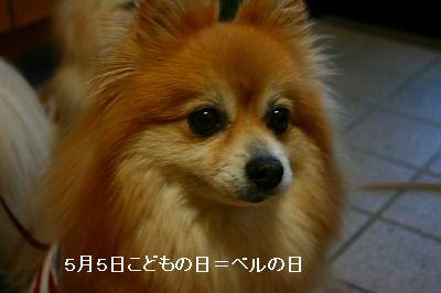 s-IMG_4312.jpg
