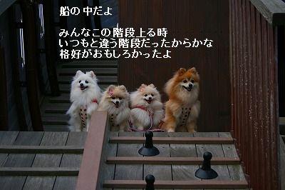 s-IMG_4370.jpg