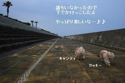 s-IMG_4376.jpg