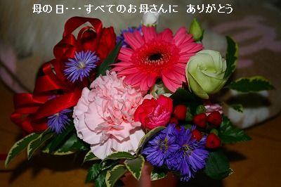 s-IMG_4406.jpg