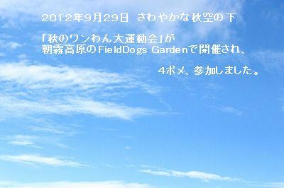 s-IMG_4409.jpg