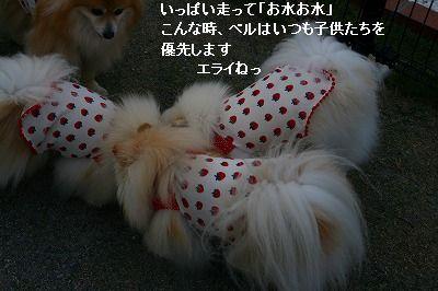 s-IMG_4438_20120516003621.jpg