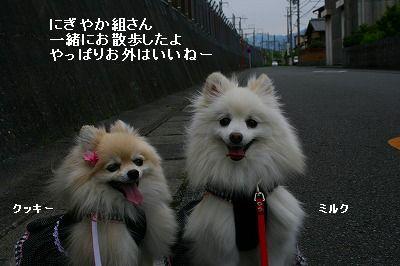 s-IMG_4551_20120520223120.jpg