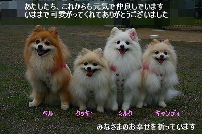 s-IMG_4696.jpg