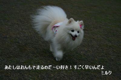 s-IMG_4711.jpg