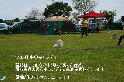 s-IMG_4924_20121001150759.jpg