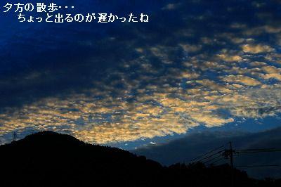 s-IMG_4943.jpg