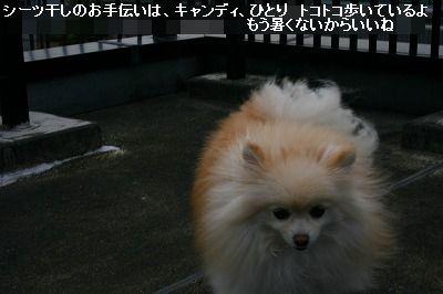 s-IMG_4976.jpg