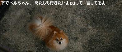 s-IMG_4988.jpg