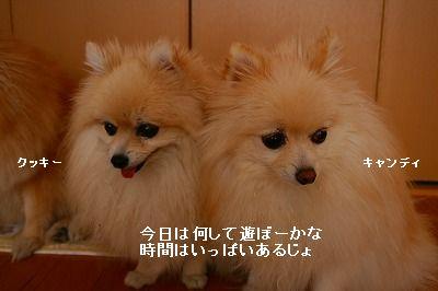 s-IMG_5022.jpg