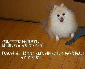 s-IMG_5198_20121014211534.jpg