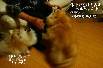 s-IMG_5207.jpg