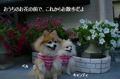 s-IMG_5230.jpg