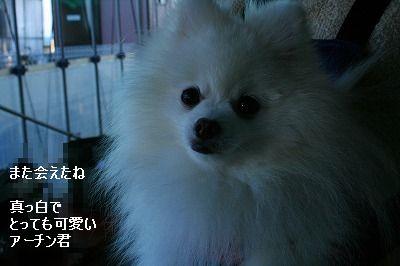 s-IMG_5275.jpg