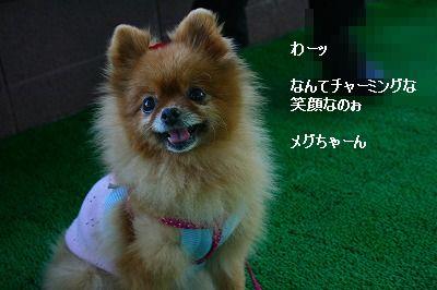 s-IMG_5290.jpg