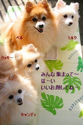 s-IMG_5418.jpg