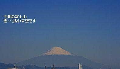 s-IMG_5422.jpg