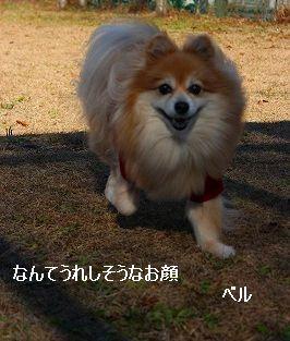 s-IMG_6023_20121202001056.jpg
