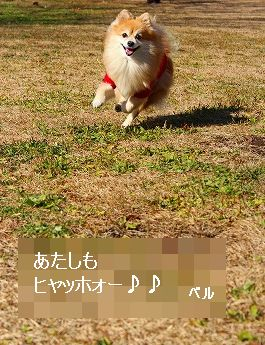 s-IMG_6037.jpg