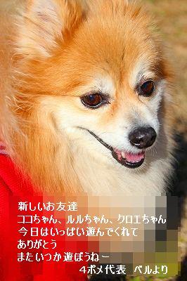s-IMG_6039.jpg
