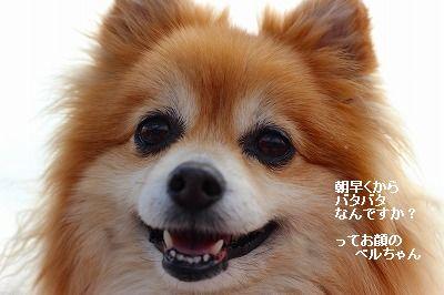 s-IMG_7117.jpg