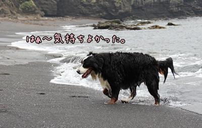 2012晴れ女1