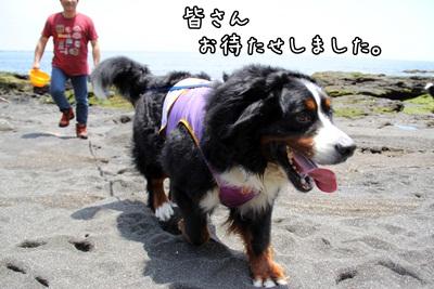 2012晴れ女3