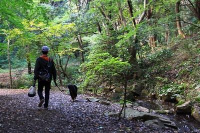201210四季の森
