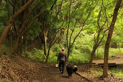 201210四季の森6