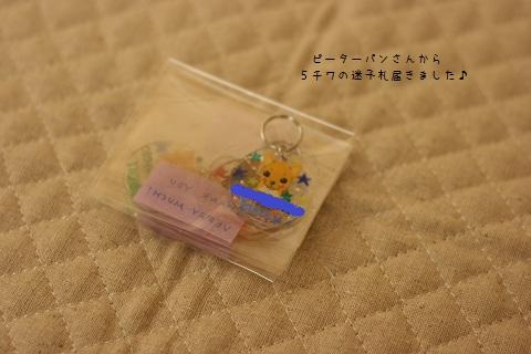 IMG_4693-001.jpg