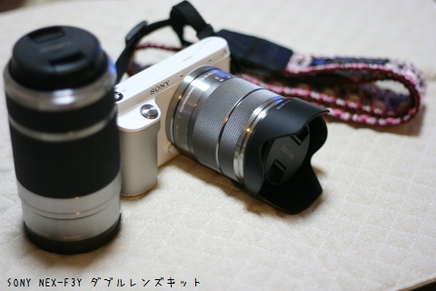 IMG_6838-001.jpg