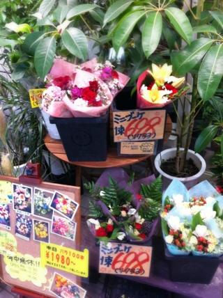 fc2blog_20120828175203bd2.jpg