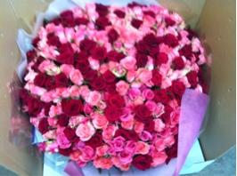 fc2blog_20121023151645e98.jpg