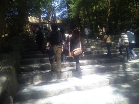 本宮前階段
