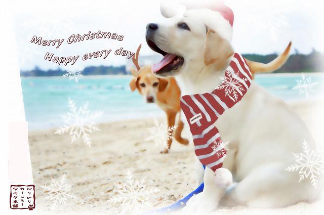 クリスマスカード2012年burogu_edited-1