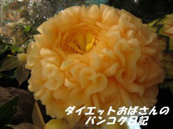 IMG_0506 - コピー