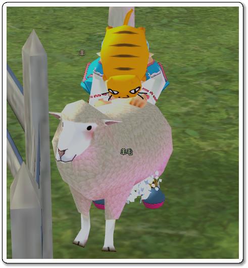120720羊毛刈りs