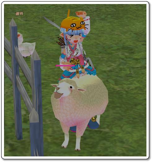 120805羊毛刈りs
