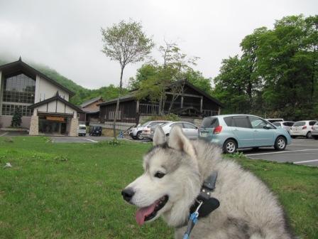 12-06-18Qちゃん玉川温泉