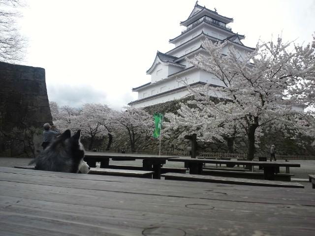 12-04-26-2お城