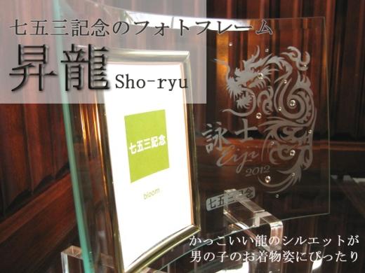 shoryu520.jpg