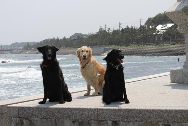 2012.05.05鳥取2